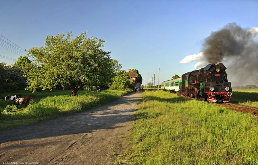 Ruchocice, pociąg osobowy Poznań Gł.- Wolsztyn