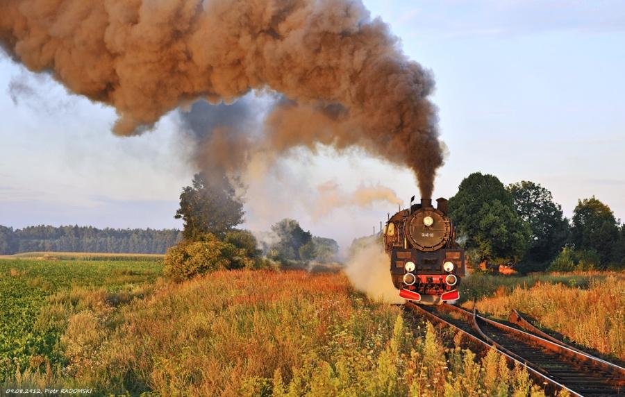 Ruchocice, pociąg osobowy Wolsztyn - Poznań Gł.