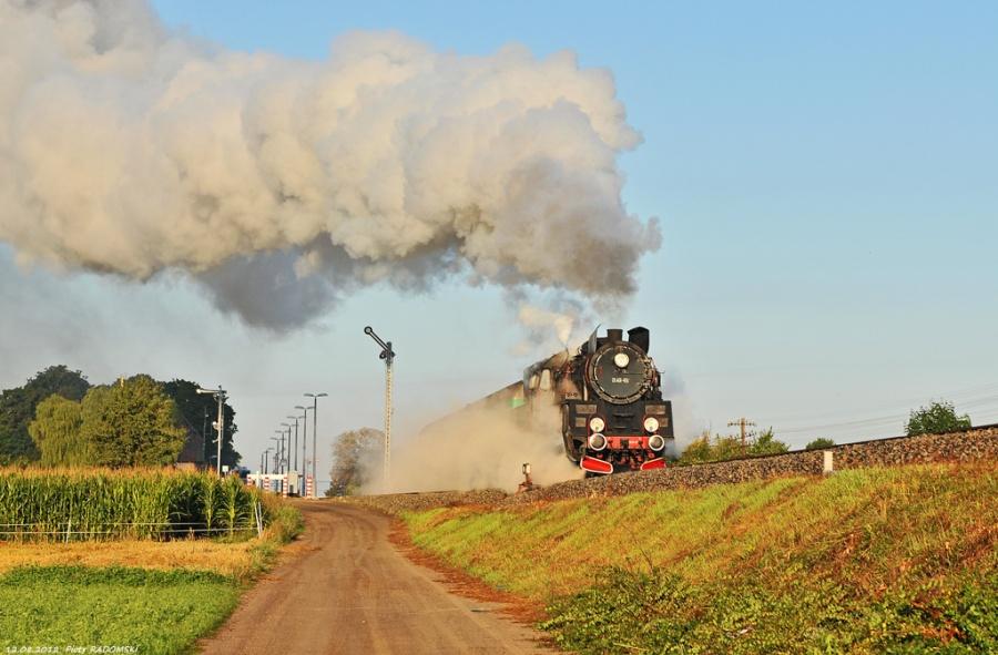 Szreniawa, pociąg osobowy Wolsztyn - Poznań Gł.