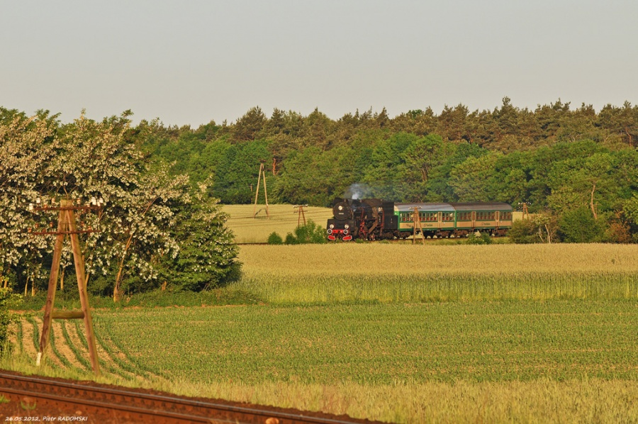 Gradowice, pociąg osobowy Wolsztyn - Poznań Gł.