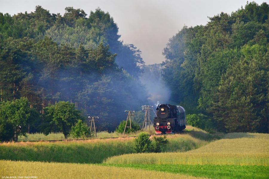 Ruchocice (Gradowice - przystanek nieczynny), pociąg osobowy Poznań Gł. - Wolsztyn