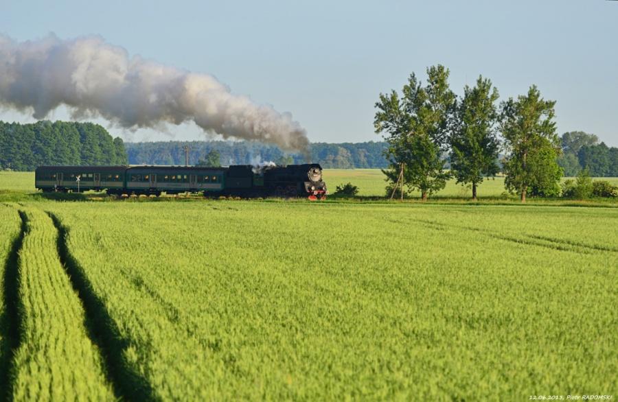 Ptaszkowo, pociąg osobowy Wolsztyn - Poznań Gł.