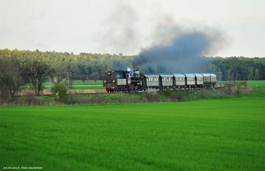 Gradowice, pociąg specjalny, Grodzisk Wlkp. - Wolsztyn