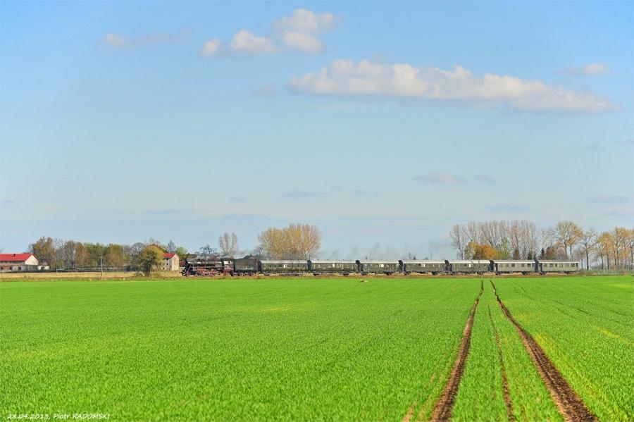 Grodzisk Wlkp., pociąg specjalny, Wolsztyn - Grodzisk Wlkp.