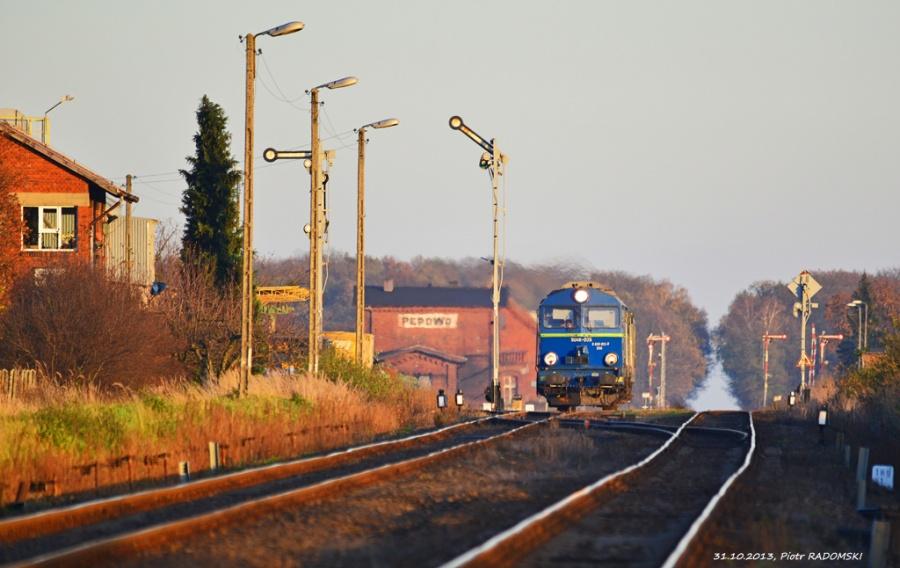 Pępowo, pociąg osobowy Ostrów Wlkp. - Leszno