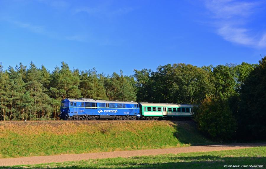 Pawłowice, pociąg osobowy Ostrów Wlkp. Leszno