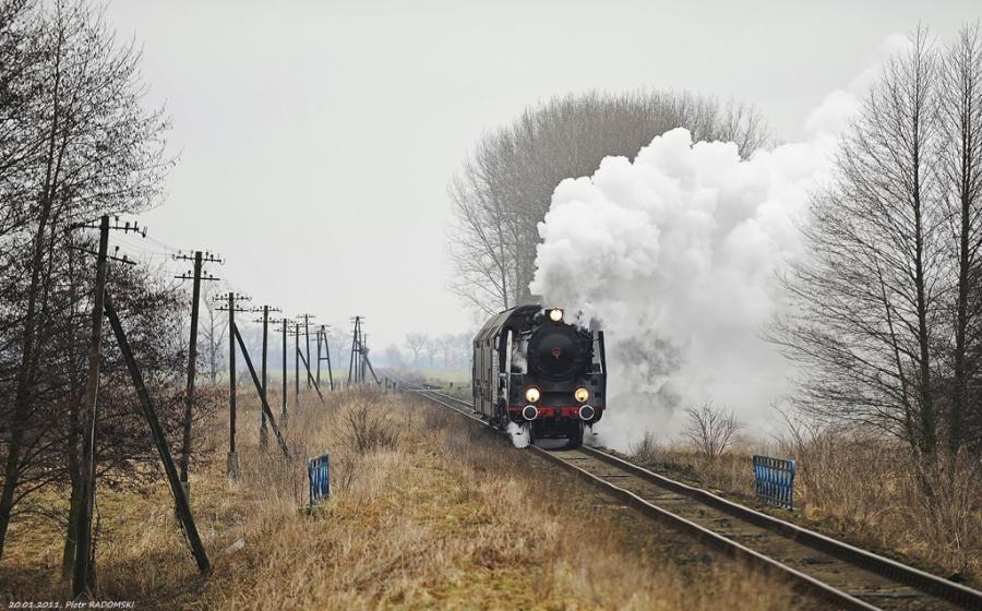 Ptaszkowo. Pociąg osobowy Poznań Gł. - Wolsztyn.