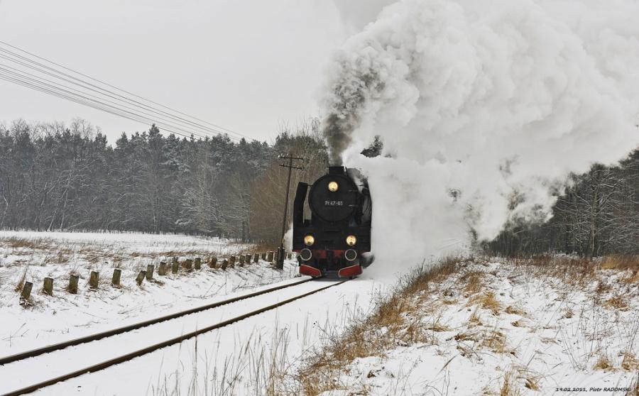 Drzymałowo. Pociąg osobowy Poznań Gł. -  Wolsztyn.